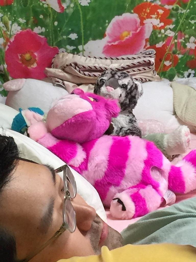 f:id:pinkstrawberryflavor:20160821134141j:image