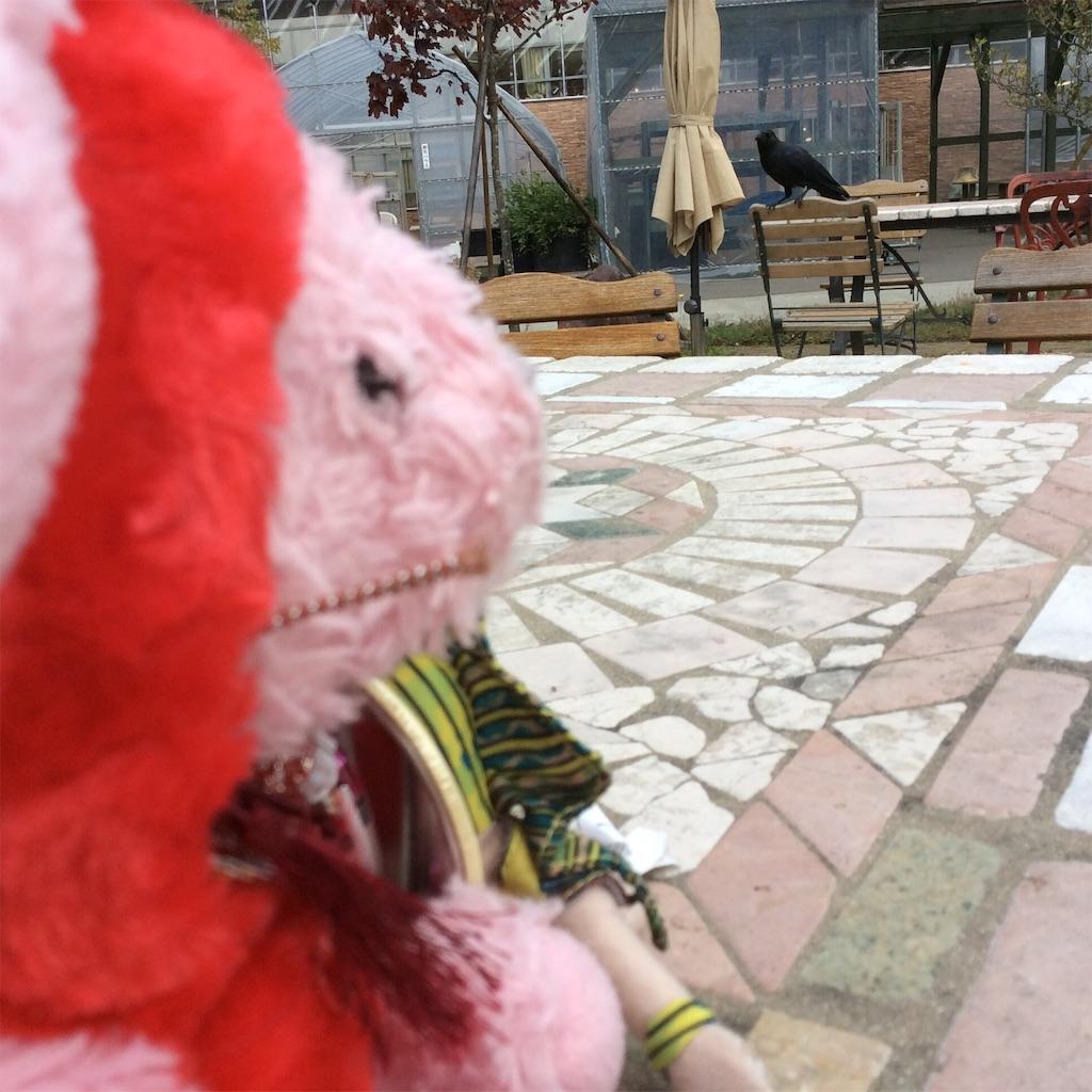 f:id:pinkstrawberryflavor:20160822152142j:image