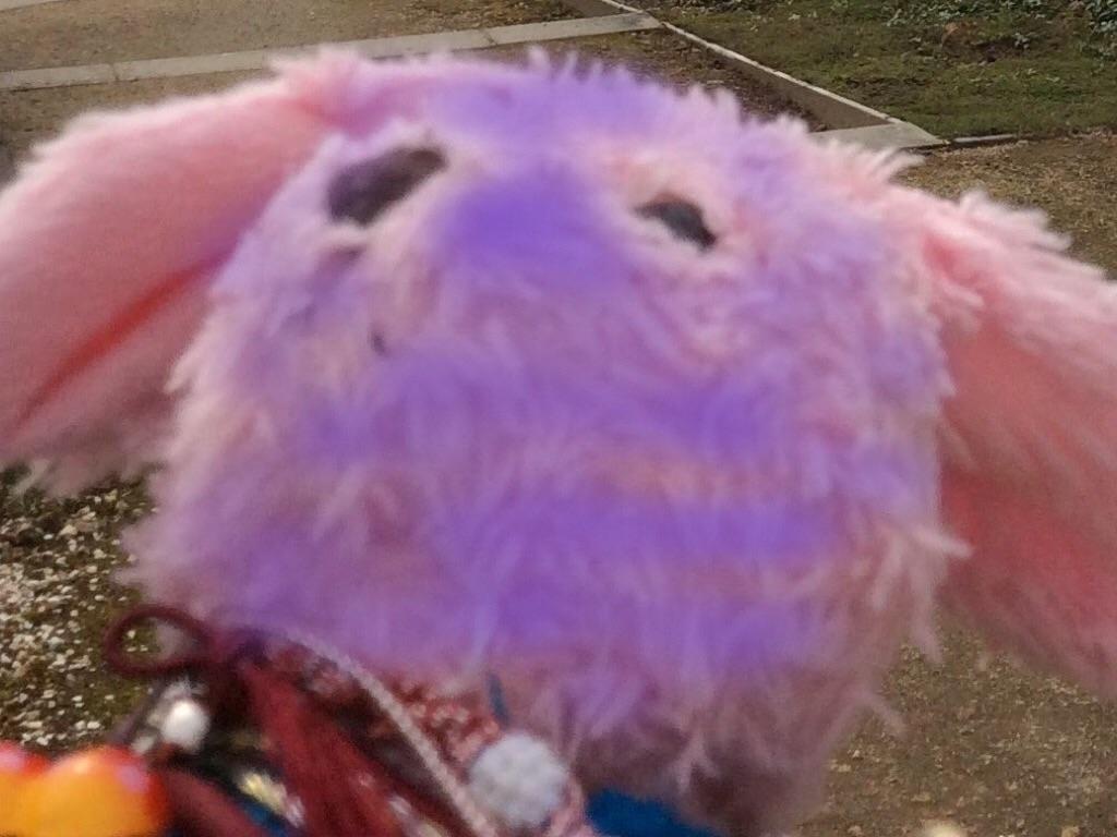 f:id:pinkstrawberryflavor:20160903100304j:image