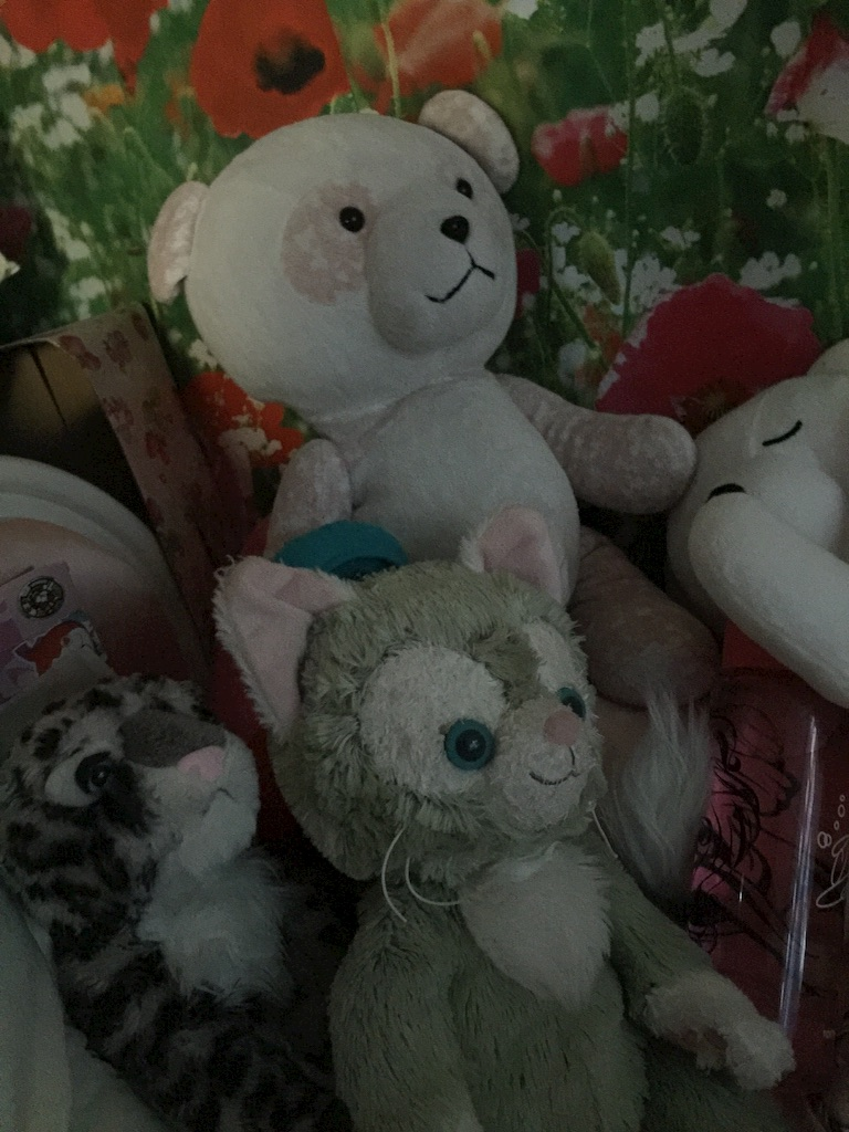 f:id:pinkstrawberryflavor:20161027000546j:image