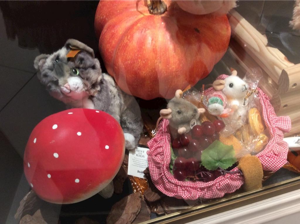 f:id:pinkstrawberryflavor:20161114155145j:image