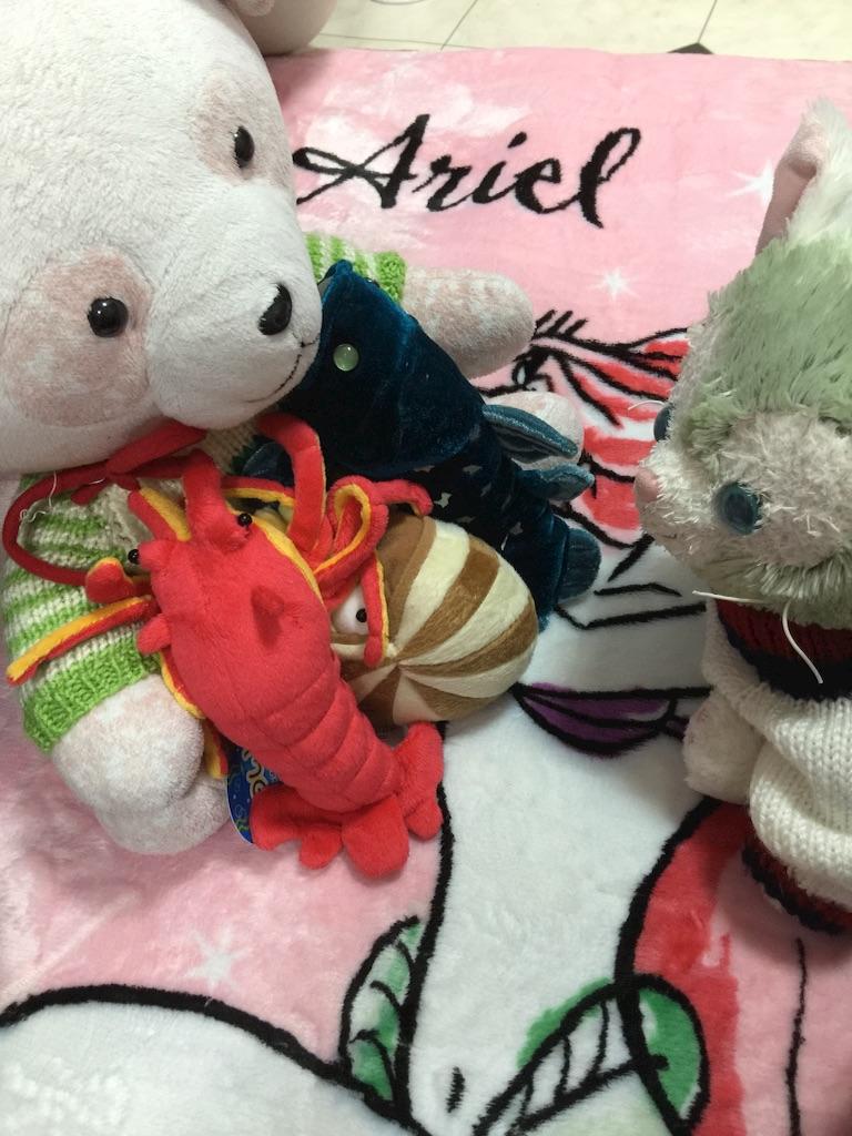 f:id:pinkstrawberryflavor:20161208102145j:image