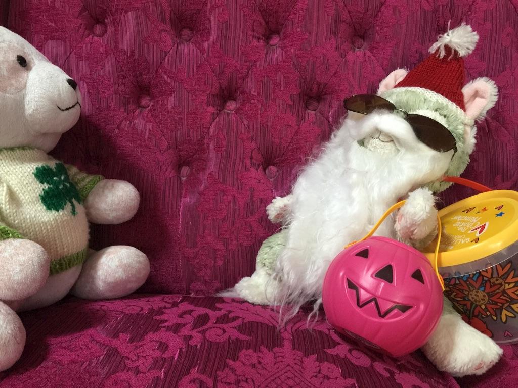 f:id:pinkstrawberryflavor:20161222113157j:image