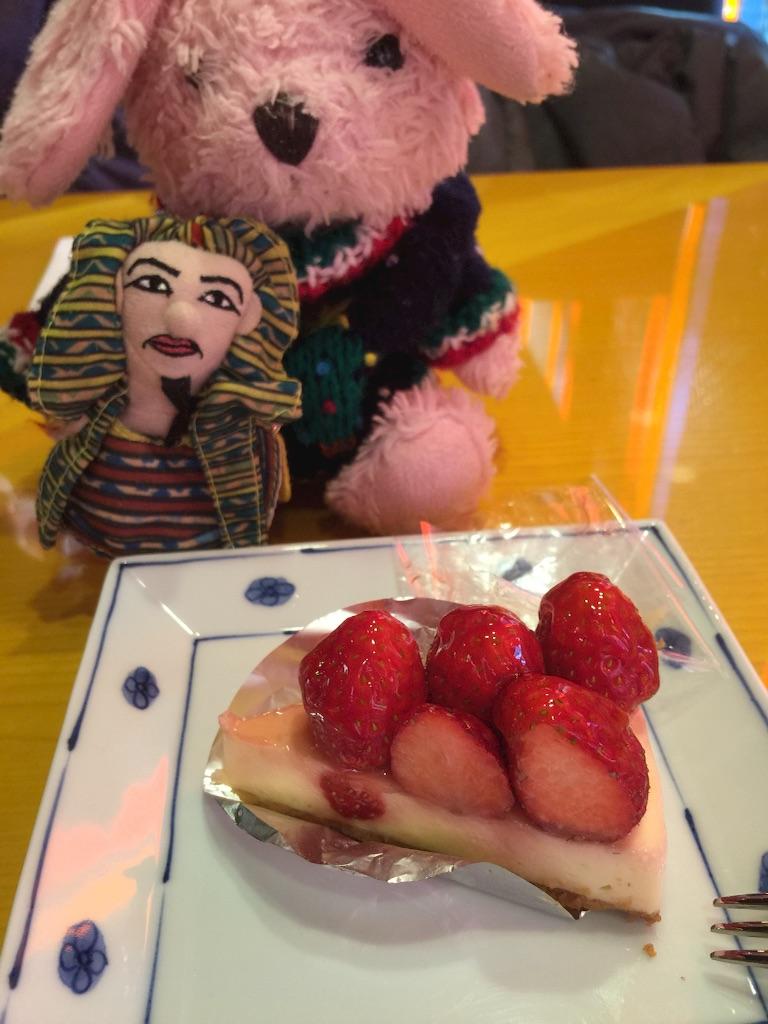 f:id:pinkstrawberryflavor:20161224102519j:image