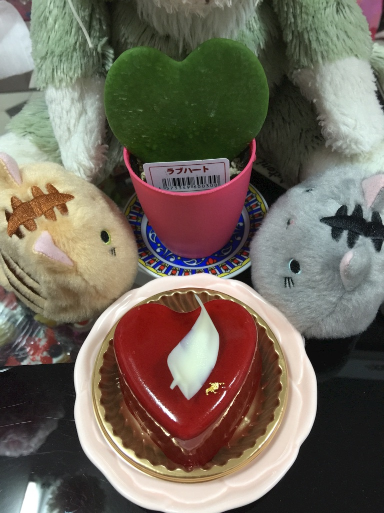 f:id:pinkstrawberryflavor:20170122103756j:image
