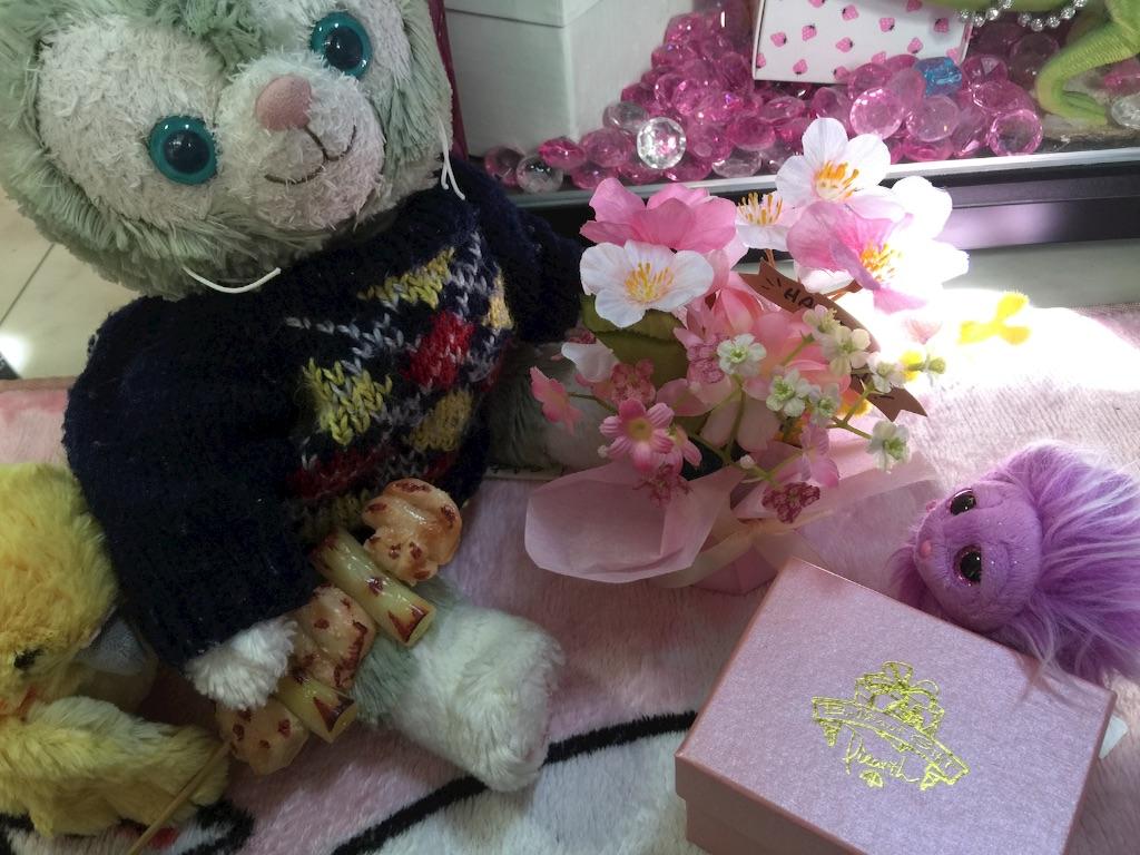f:id:pinkstrawberryflavor:20170225104110j:image