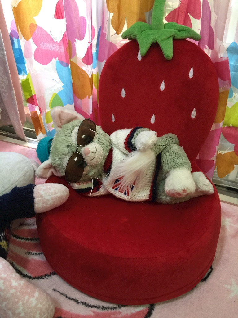 f:id:pinkstrawberryflavor:20170520111222j:image