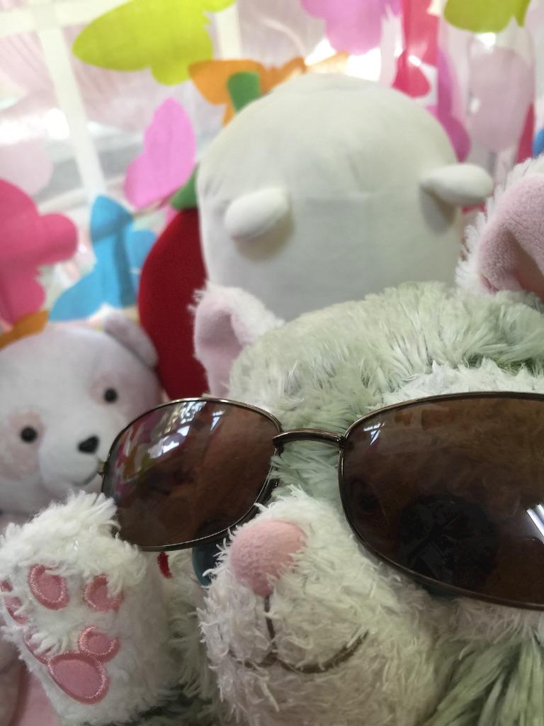 f:id:pinkstrawberryflavor:20170530113617j:image