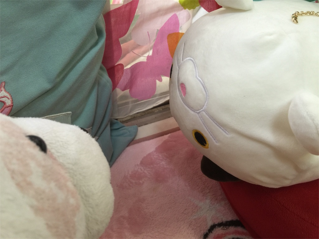 f:id:pinkstrawberryflavor:20170530125126j:image