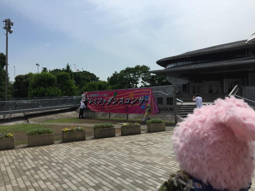 f:id:pinkstrawberryflavor:20170610094852j:image