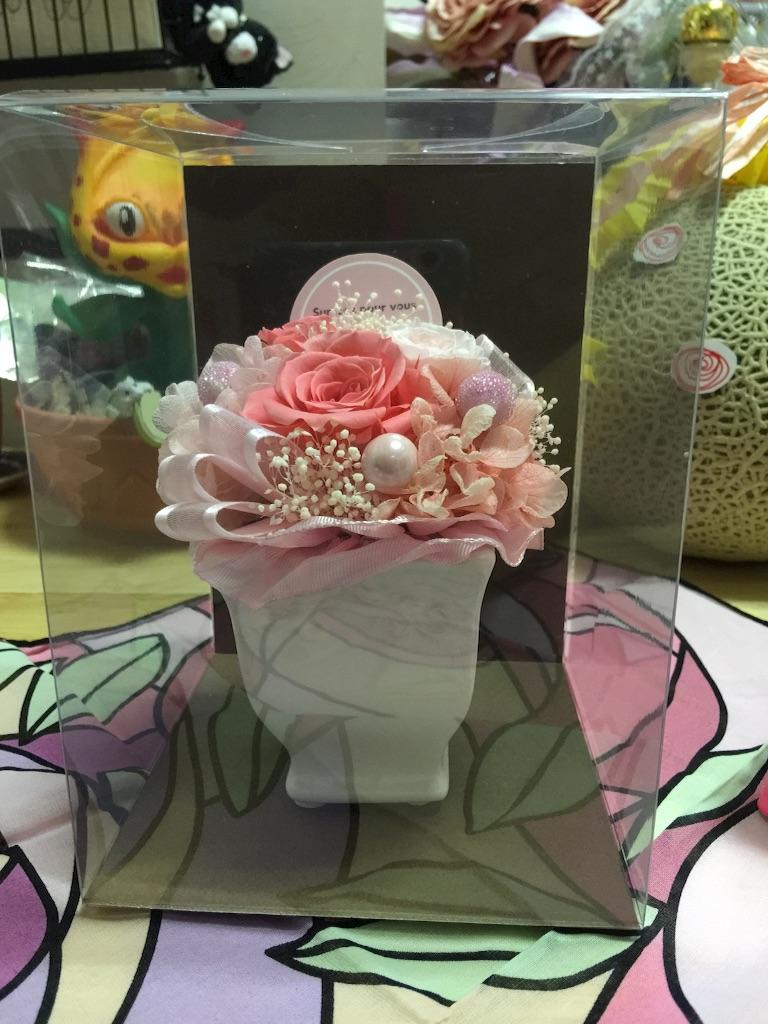 f:id:pinkstrawberryflavor:20170722094826j:image