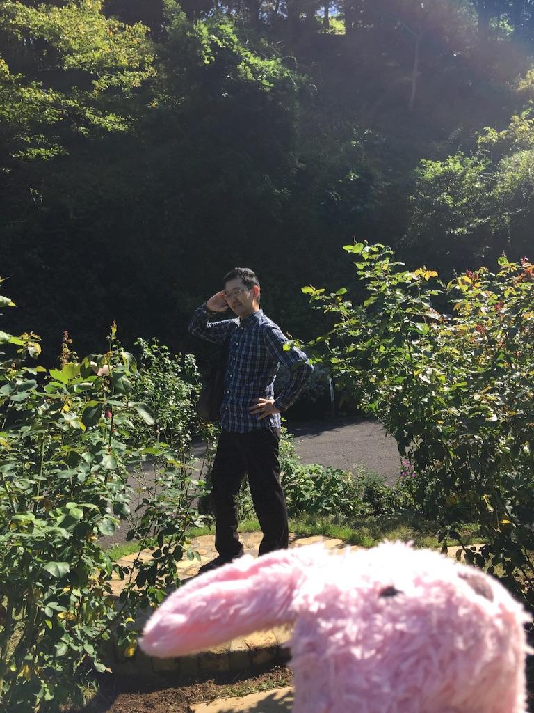 f:id:pinkstrawberryflavor:20171015151223j:image