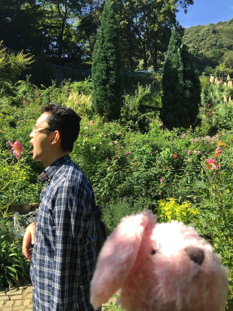 f:id:pinkstrawberryflavor:20171015151248j:image
