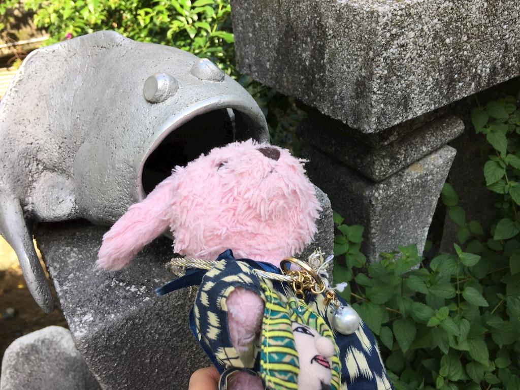 f:id:pinkstrawberryflavor:20171015165613j:image