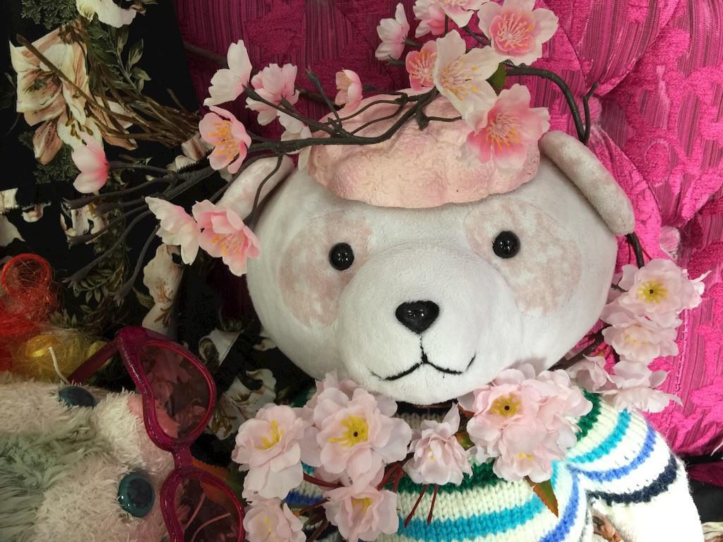 f:id:pinkstrawberryflavor:20171229230946j:image