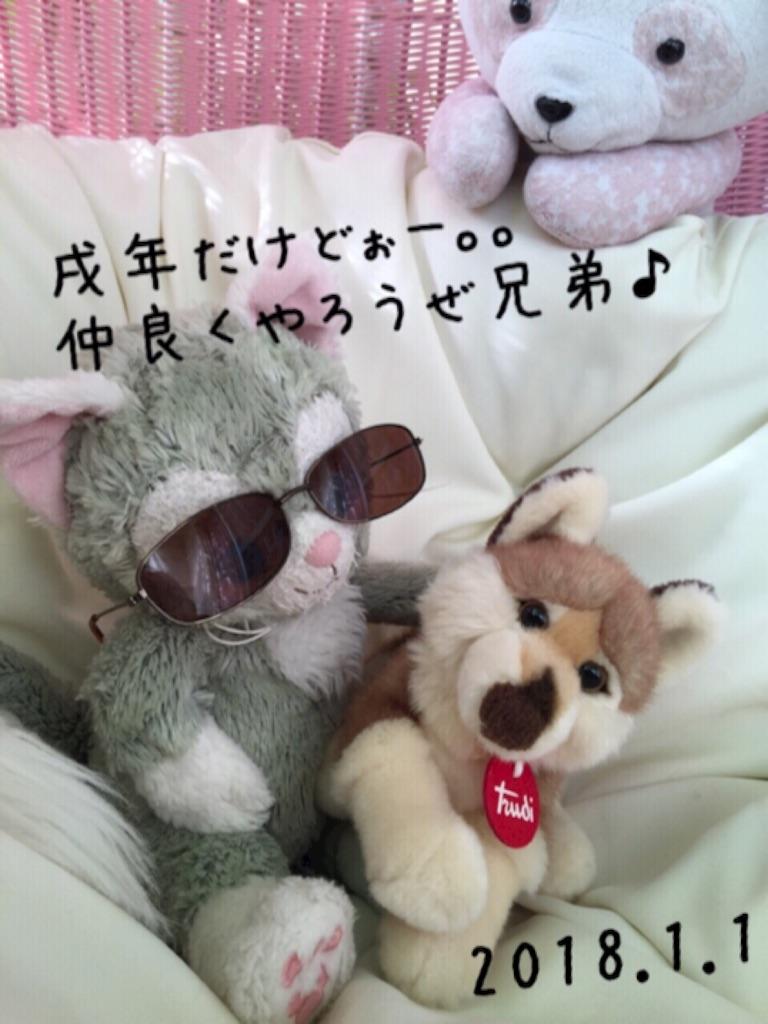 f:id:pinkstrawberryflavor:20171231121032j:image