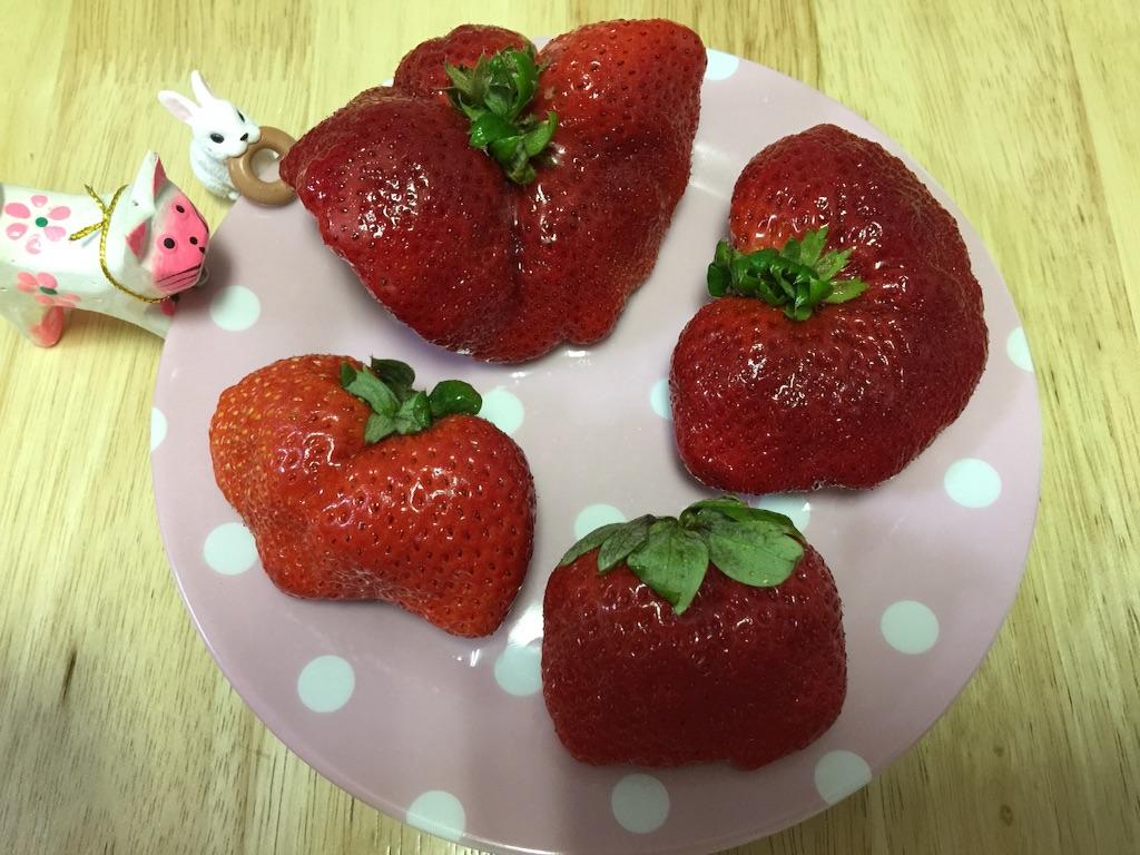 f:id:pinkstrawberryflavor:20180113143138j:image