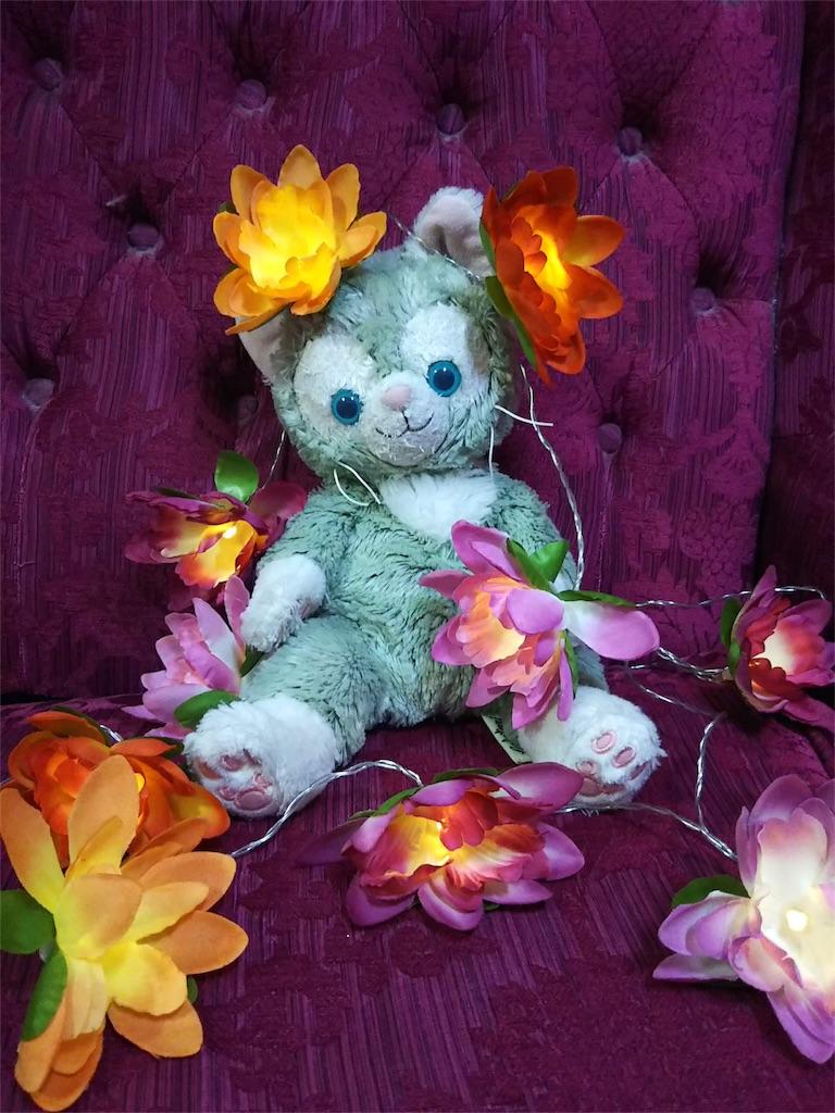 f:id:pinkstrawberryflavor:20181104122324j:image