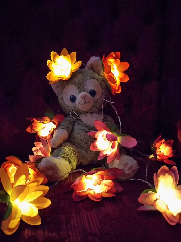 f:id:pinkstrawberryflavor:20181104122338j:image