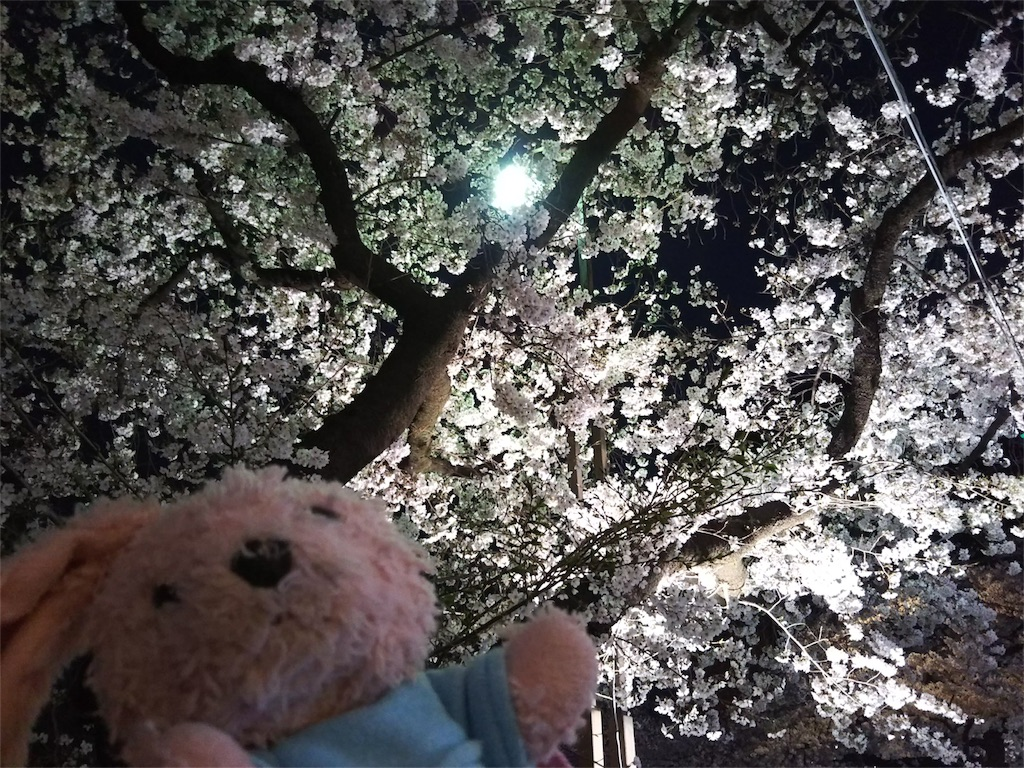 f:id:pinkstrawberryflavor:20190330133837j:image