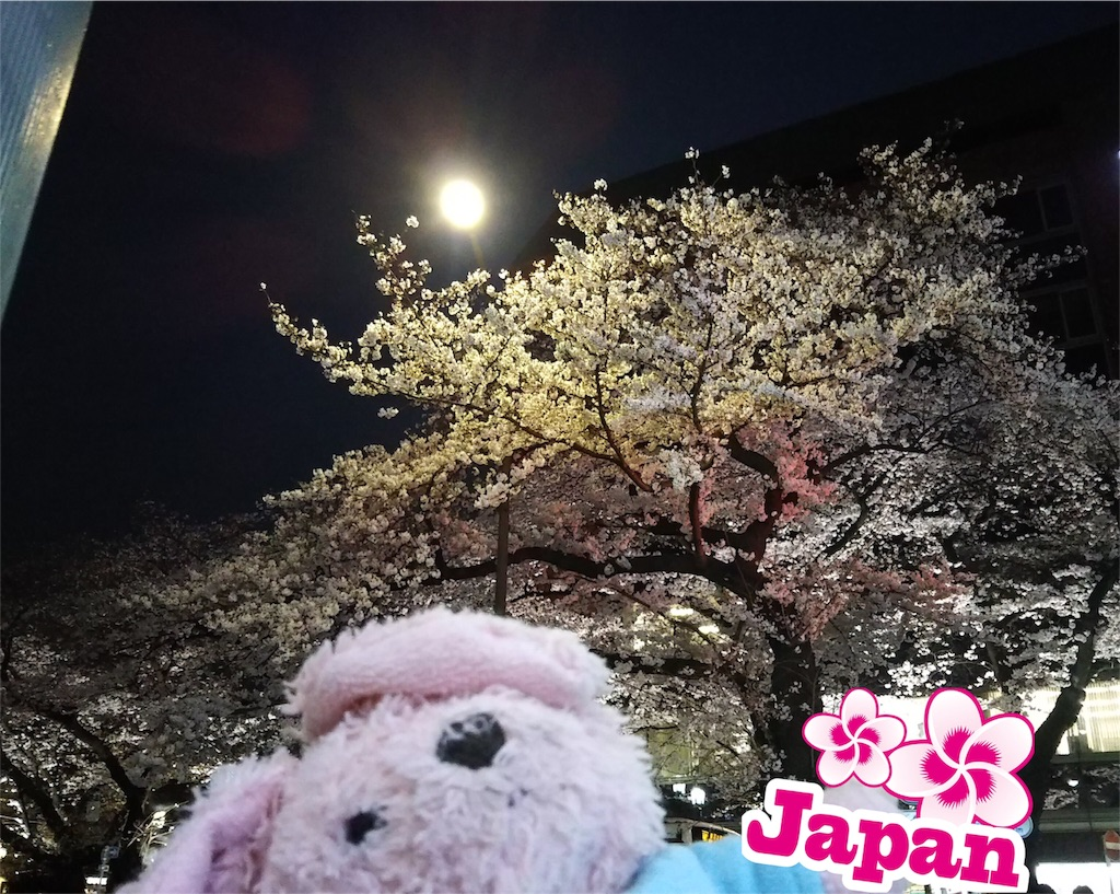 f:id:pinkstrawberryflavor:20190330134001j:image