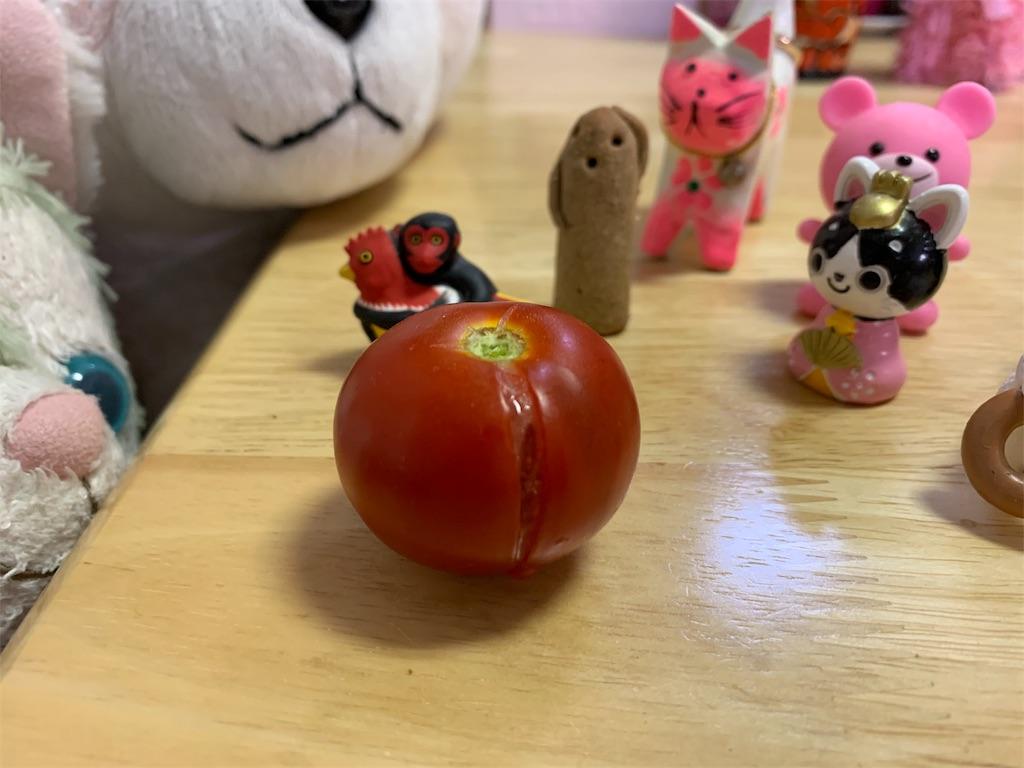 f:id:pinkstrawberryflavor:20190706124107j:image