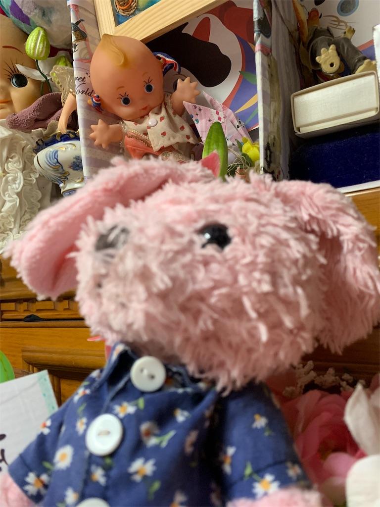 f:id:pinkstrawberryflavor:20190719212101j:image