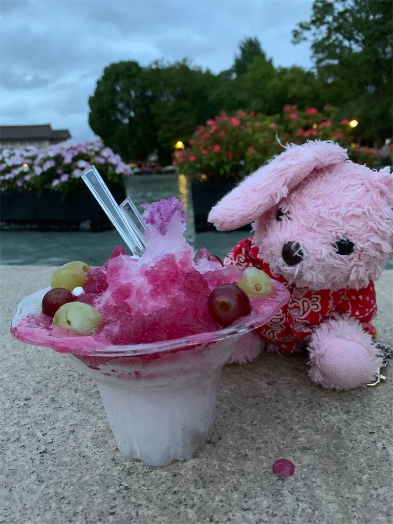 f:id:pinkstrawberryflavor:20190815111542j:image