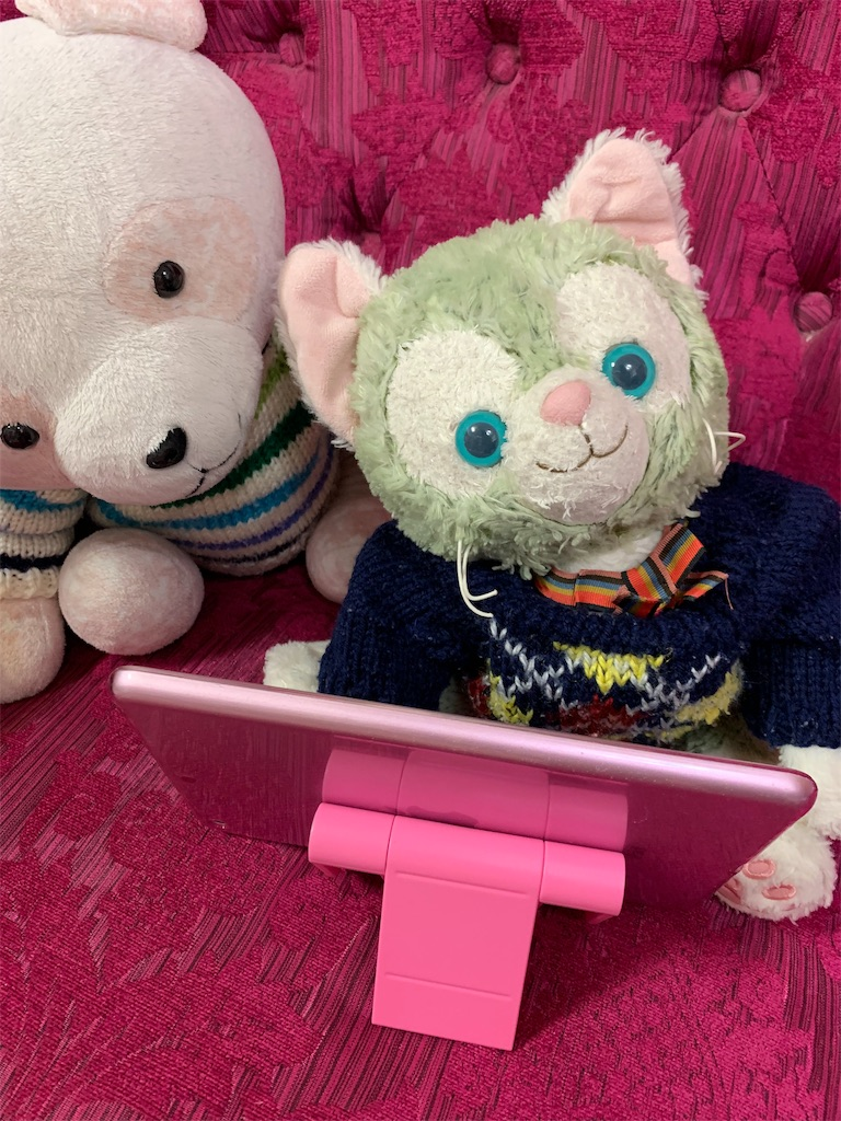 f:id:pinkstrawberryflavor:20200217132222j:image