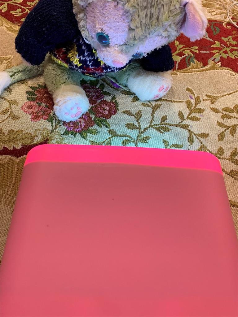 f:id:pinkstrawberryflavor:20200217132425j:image