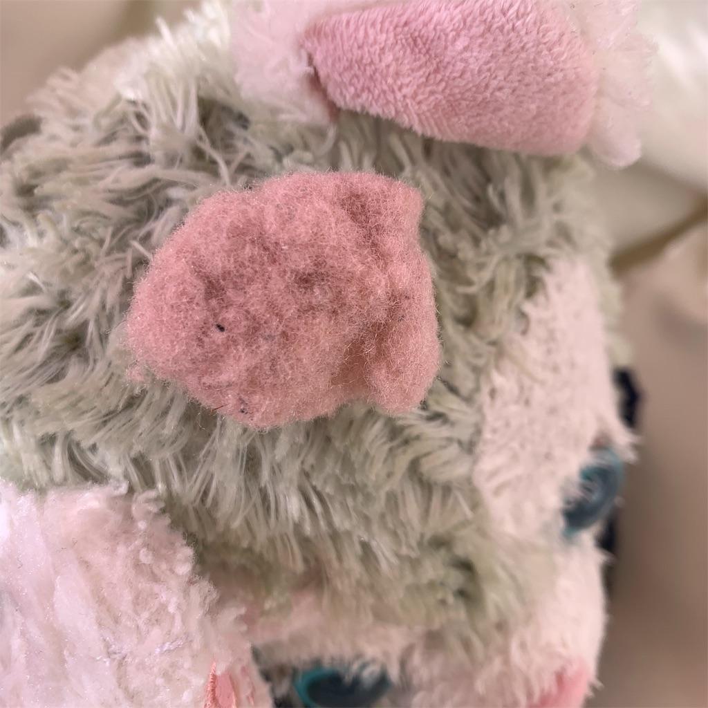 f:id:pinkstrawberryflavor:20200301124515j:image