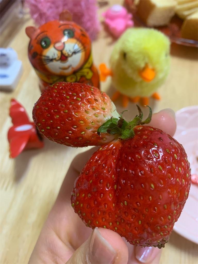 f:id:pinkstrawberryflavor:20200316121946j:image