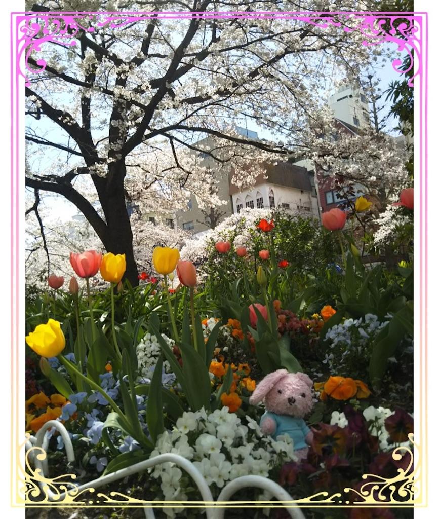 f:id:pinkstrawberryflavor:20200407095803j:image