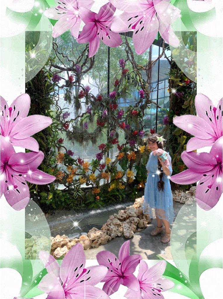 f:id:pinkstrawberryflavor:20200413103030j:image