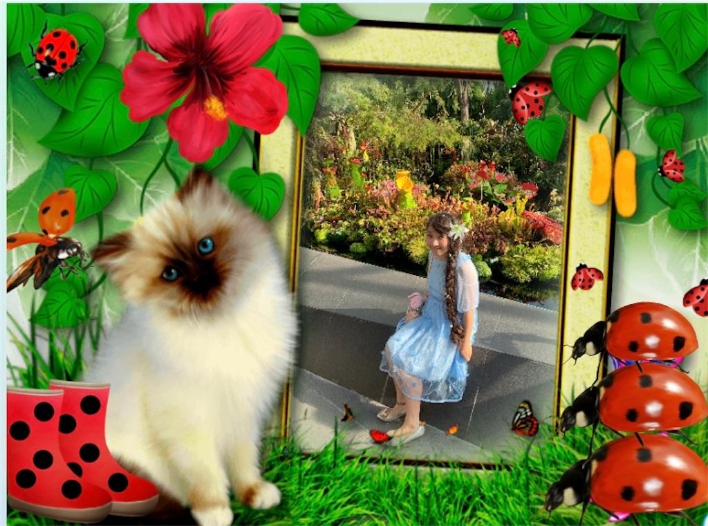 f:id:pinkstrawberryflavor:20200430121538j:image