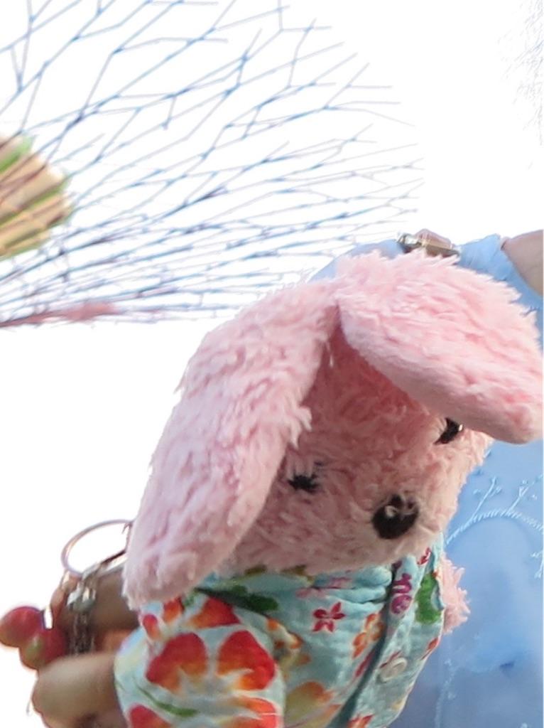 f:id:pinkstrawberryflavor:20200504103811j:image