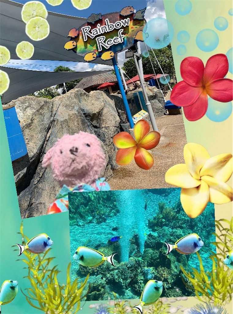f:id:pinkstrawberryflavor:20200514080731j:image