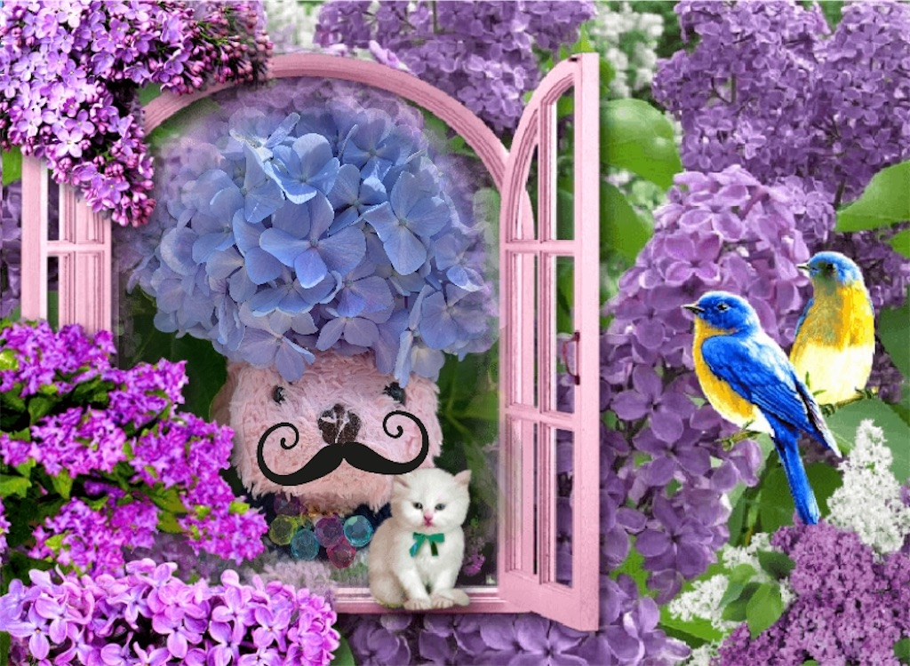 f:id:pinkstrawberryflavor:20200621133718j:image