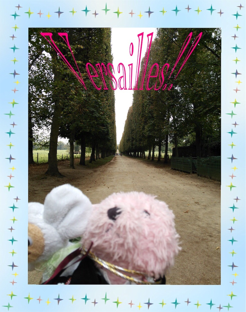 f:id:pinkstrawberryflavor:20200712164131j:image