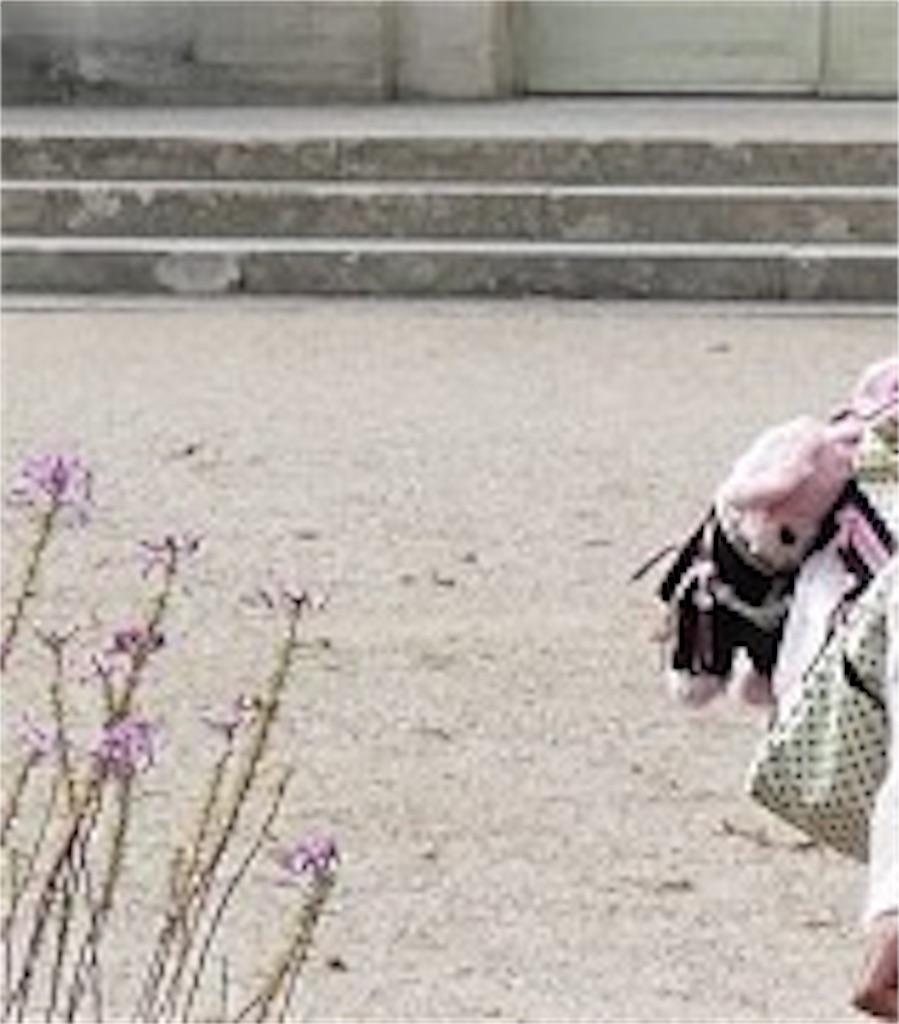 f:id:pinkstrawberryflavor:20200808141204j:image