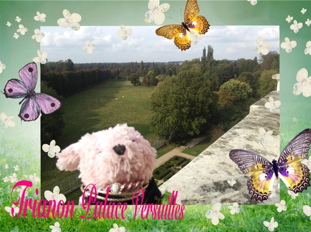 f:id:pinkstrawberryflavor:20200905142702j:image