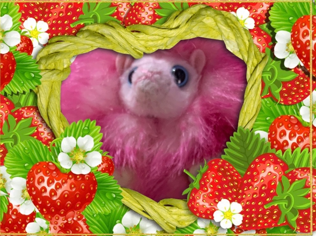 f:id:pinkstrawberryflavor:20200920113257j:image