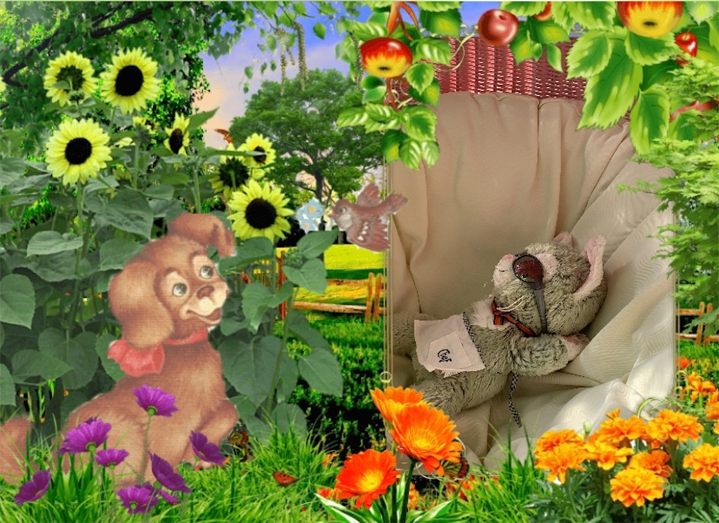 f:id:pinkstrawberryflavor:20201106114659j:image