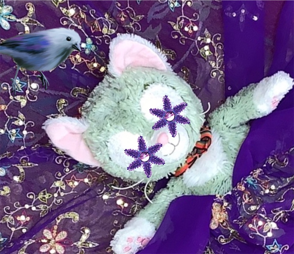 f:id:pinkstrawberryflavor:20201115121027j:image