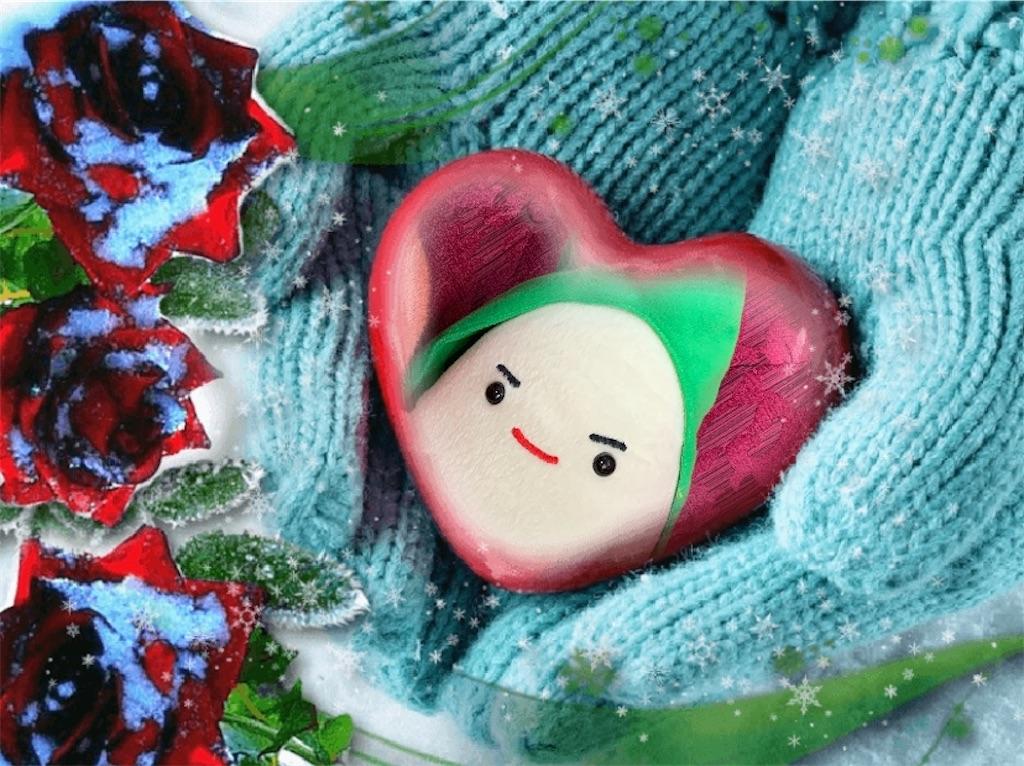 f:id:pinkstrawberryflavor:20201122121948j:image
