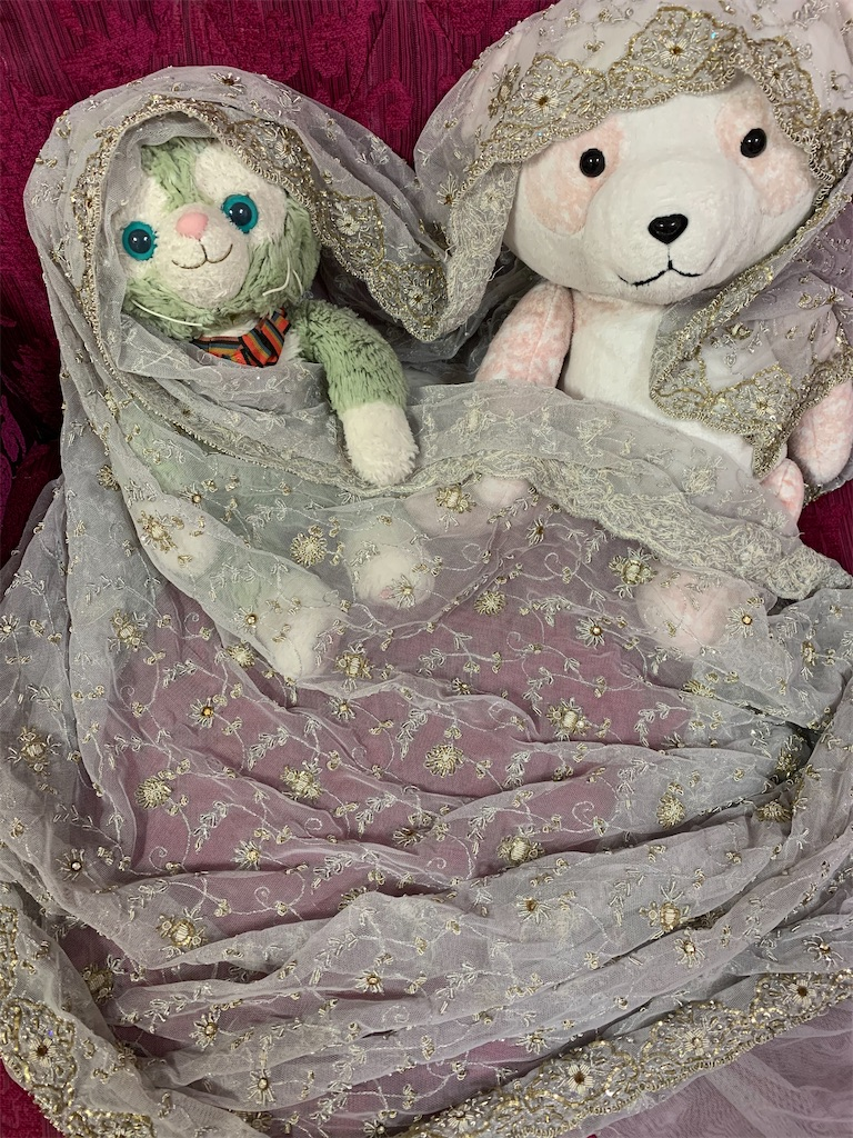 f:id:pinkstrawberryflavor:20201213121010j:image