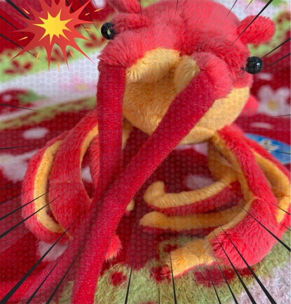 f:id:pinkstrawberryflavor:20210117130138j:plain