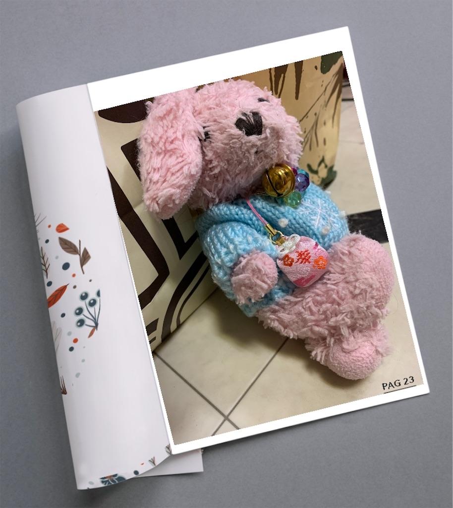 f:id:pinkstrawberryflavor:20210208110441j:plain
