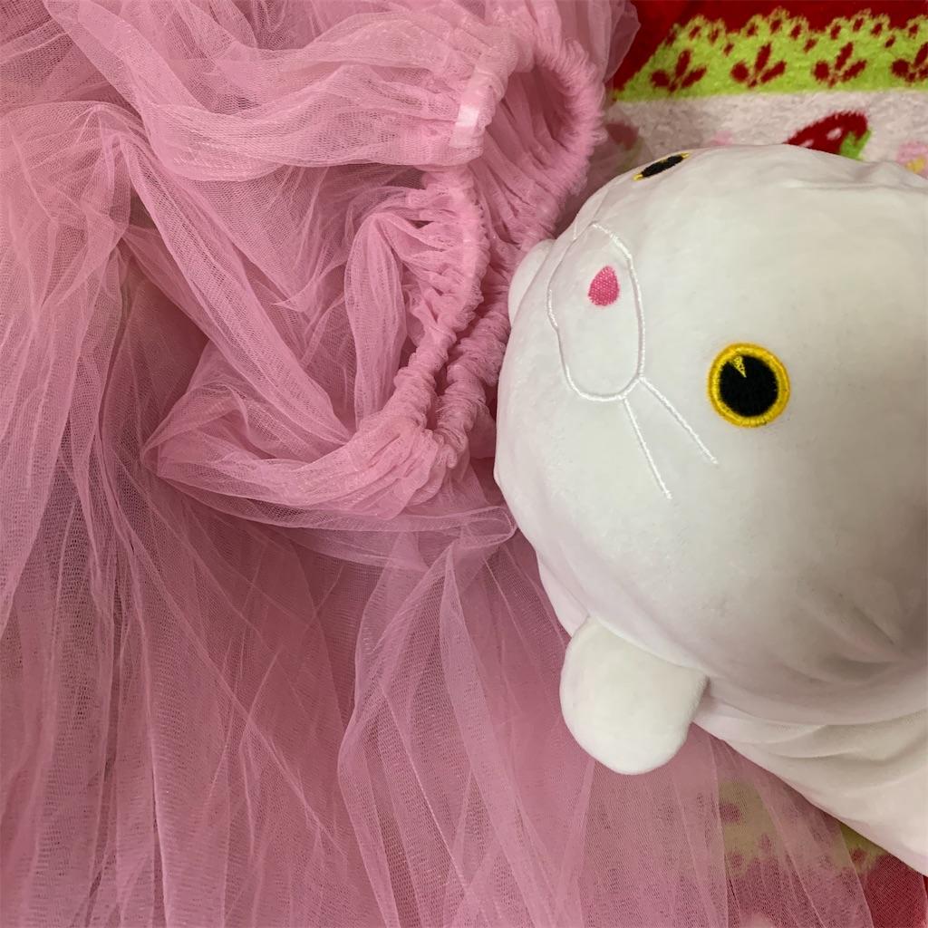 f:id:pinkstrawberryflavor:20210327114522j:plain