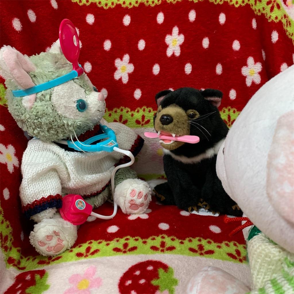 f:id:pinkstrawberryflavor:20210408103738j:plain